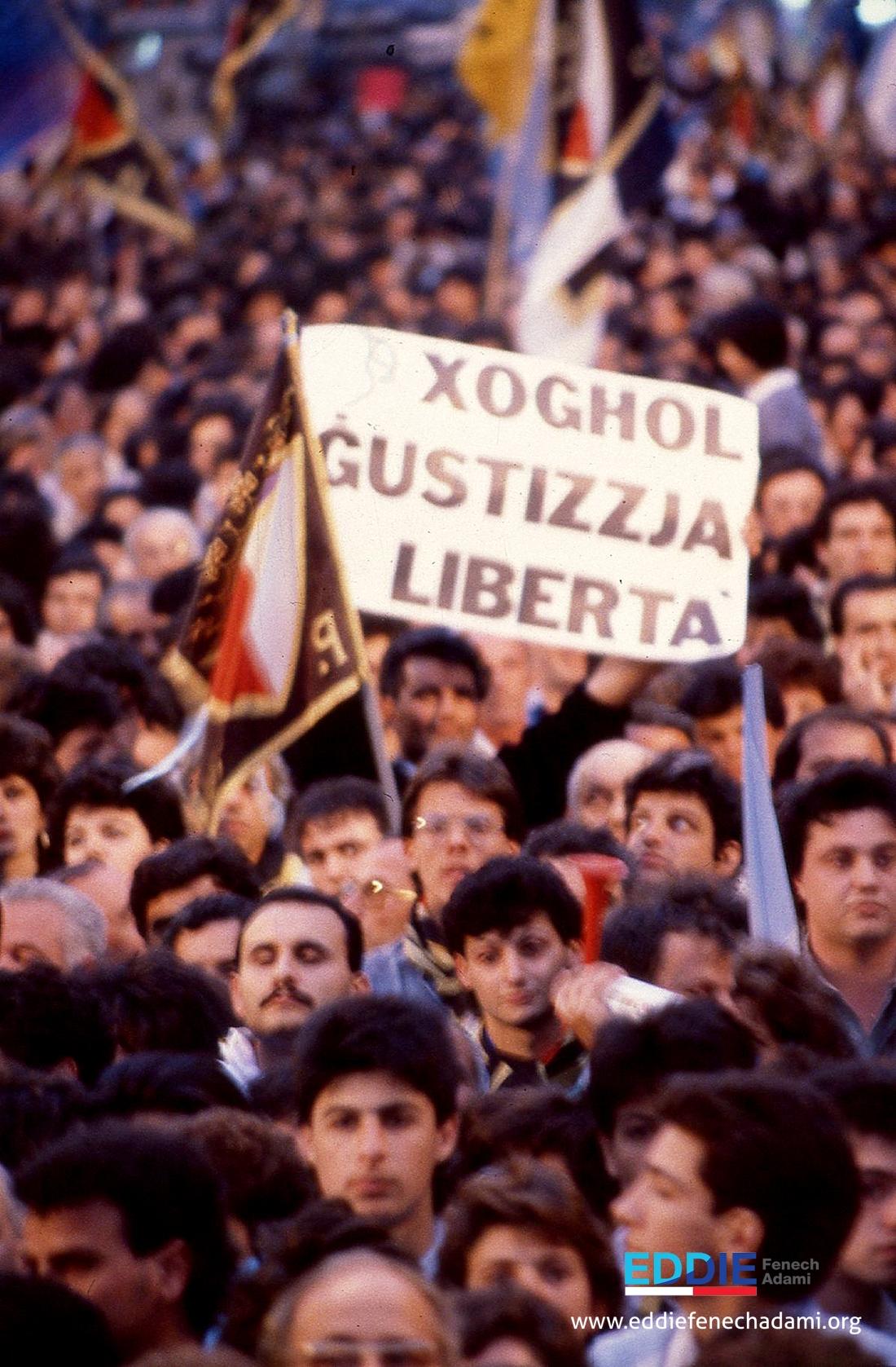 www.eddiefenechadami.org0167